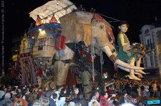 elephant__girl