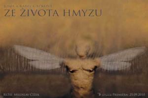 Ze_zivota_hmyzu