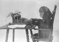 Monkey_typing